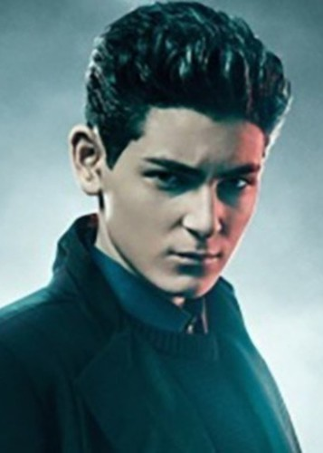 David Mazouz as Red robin in My dc universe