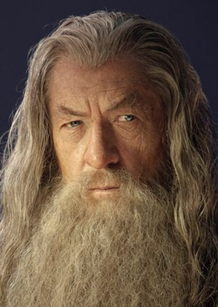 Ian McKellen as Gandalf in The Lord of the Rings