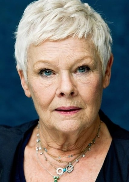 Judi Dench as Minerva McGonagall in The PERFECT Harry Potter Reboot