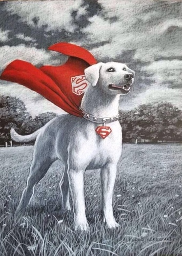 Krypto in Superman: