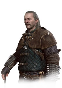 The Witcher: Vesemir