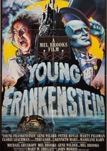 Young Frankenstein (1994)