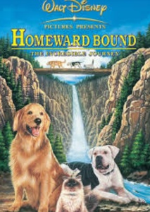 Homeward Bound: The Incredible Journey