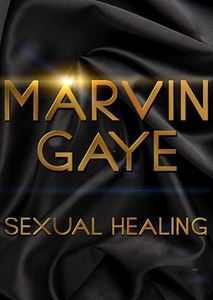 Sexual Healing: The Marvin Gaye Story