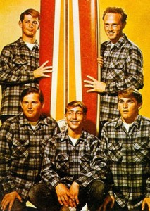 The Beach Boys Biopic