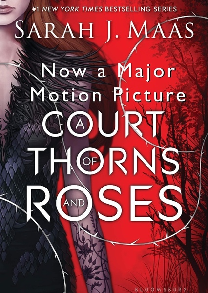 A Court of Thorns and Roses Fan Casting Poster