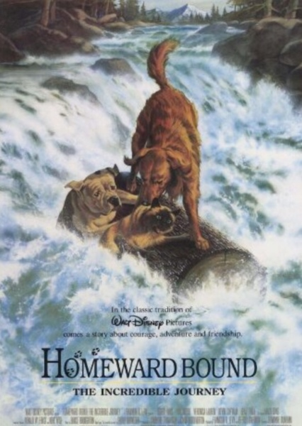 Homeward Bound: The Incredible Journey Fan Casting Poster