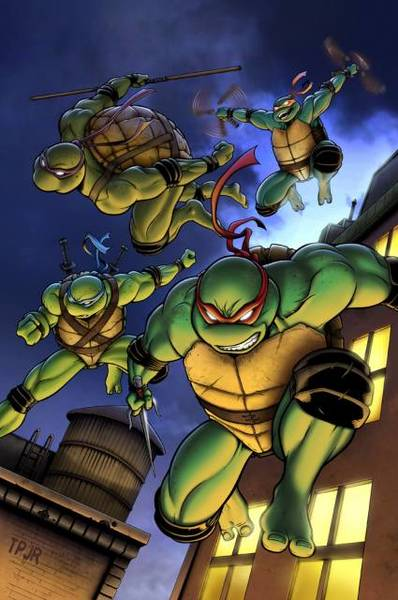 Teenage Mutant Ninja Turtles Fan Casting Poster