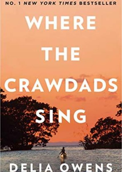 Where the crawdads sing  Fan Casting Poster