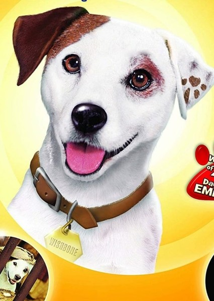 Wishbone Fan Casting Poster